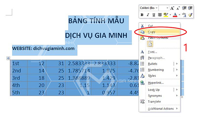 sao-chep-word-sang-excel-dichvugiaminh-10-resize
